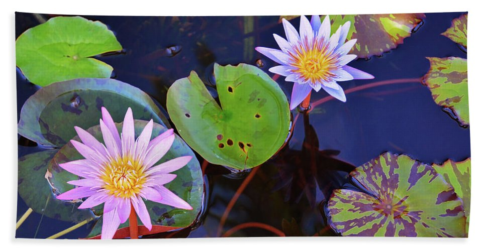 Water Lily Hand Towel featuring the photograph Water Lilies In Kauai by Marie Hicks