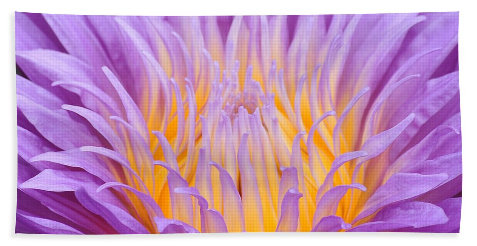 Water Bath Sheet featuring the photograph water lily 55 Ultraviolet by Terri Winkler