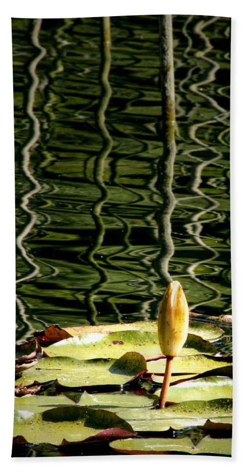 Water Lily Bud Bath Sheet featuring the photograph Water Lily Budd by Chris Brannen