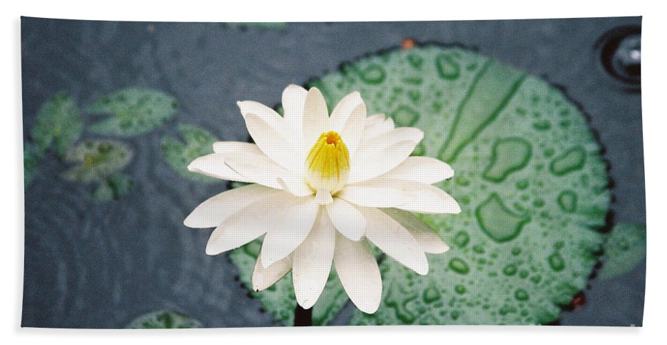 Flowers Bath Towel featuring the photograph Water Lily by Kathy McClure