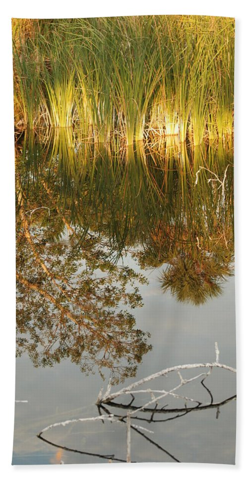 Wood Hand Towel featuring the photograph Water Line by Rob Hans