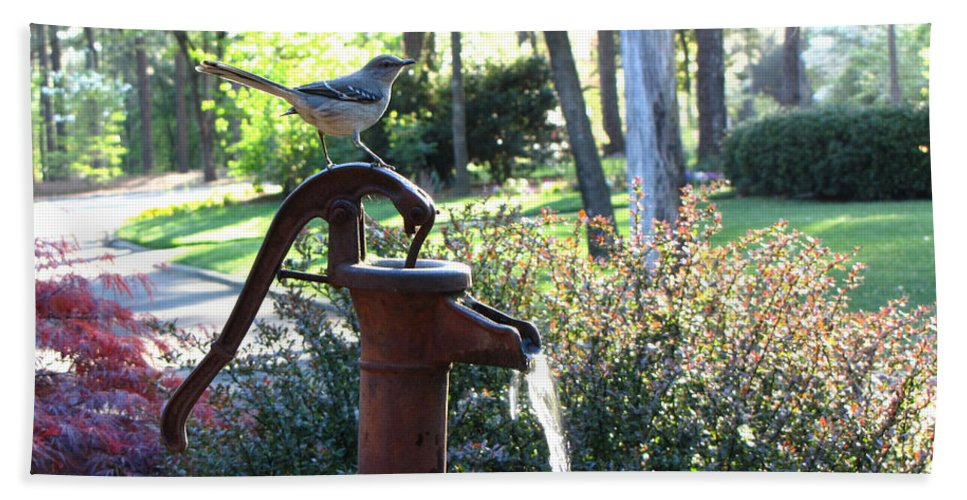 Water Pump Hand Towel featuring the photograph Water Pump by Sarah Houser
