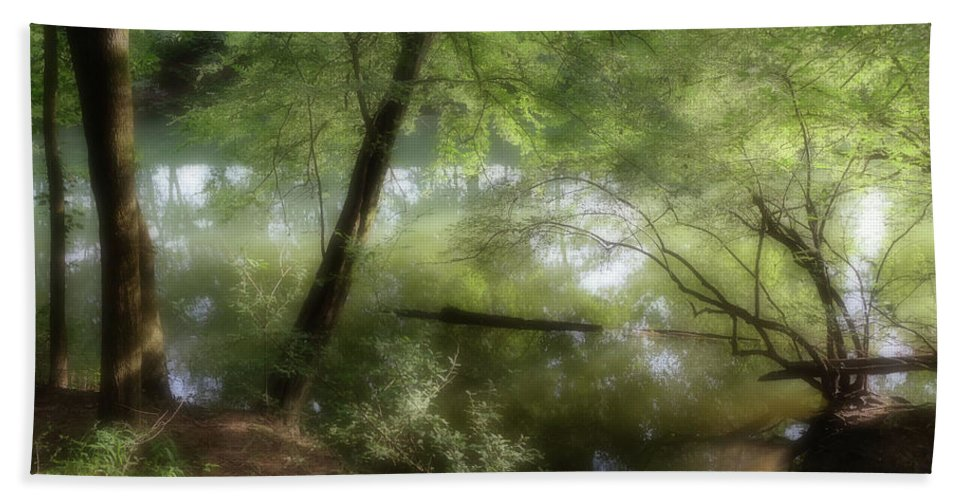 Bath Sheet featuring the photograph Water Side by Reid Brown
