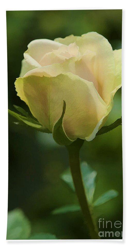 Rose Bath Sheet featuring the photograph Watercolor Rose by Deborah Benoit