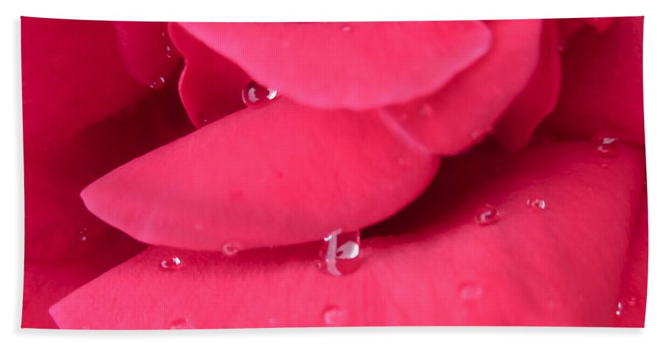 Photograph Of Deep Pink Rose Hand Towel featuring the photograph Waterfall by Gwyn Newcombe
