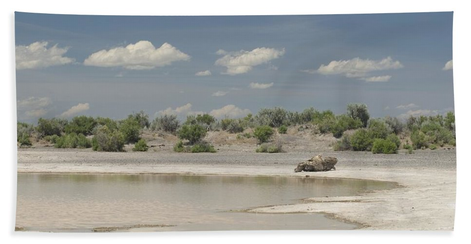 Water Hand Towel featuring the photograph Watering Hole by Sara Stevenson