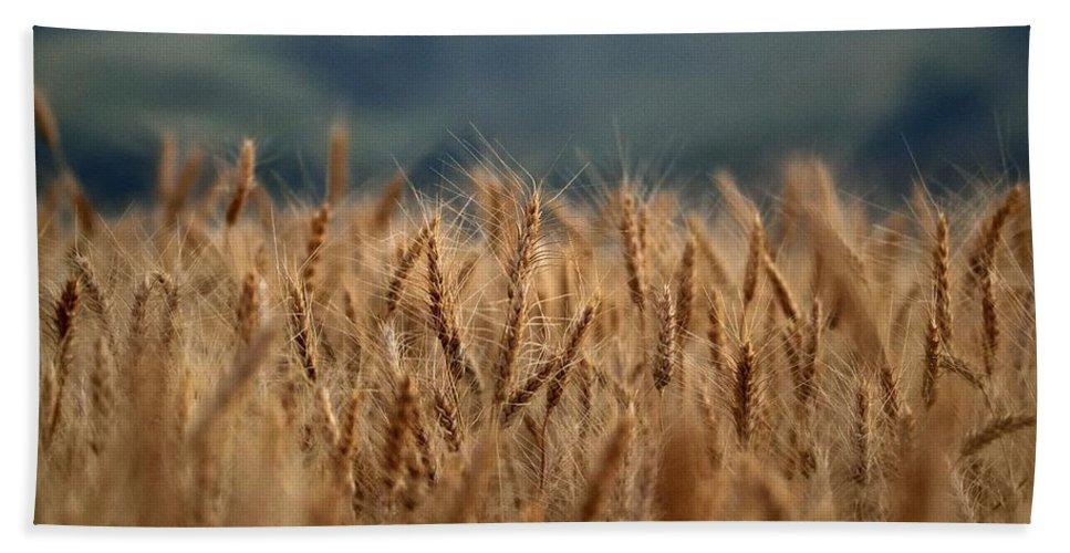 Grain Bath Sheet featuring the photograph Waves Of Grain by Michael Morse