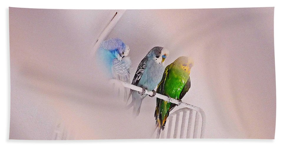 Birds Bath Sheet featuring the photograph We Three Birds by Charles Stuart