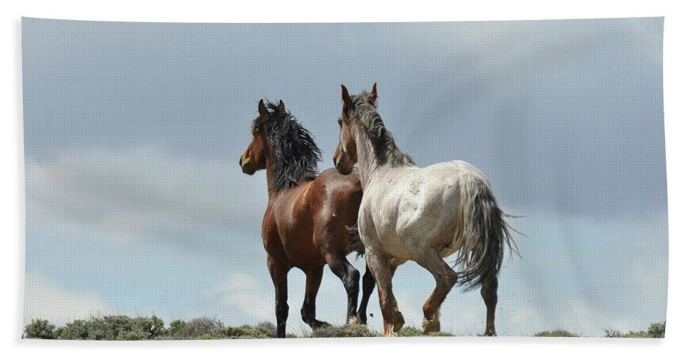 Wild Horses Bath Towel featuring the photograph We Will Be Over the Hill in a Few Seconds by Frank Madia