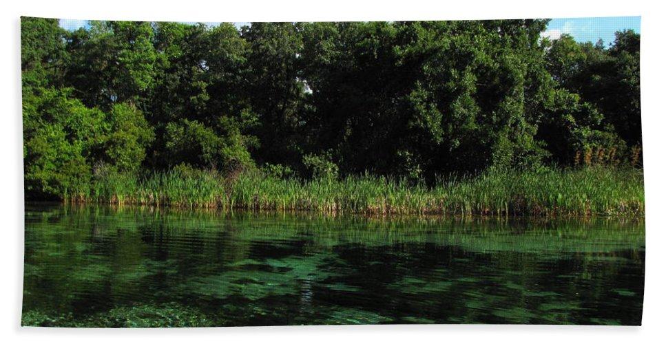 Weeki Wachee River Bath Sheet featuring the photograph Weeki Wachee River by Barbara Bowen