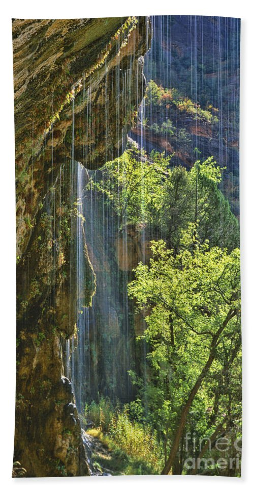 Southwest Hand Towel featuring the photograph Weeping Rock - Zion Canyon by Sandra Bronstein