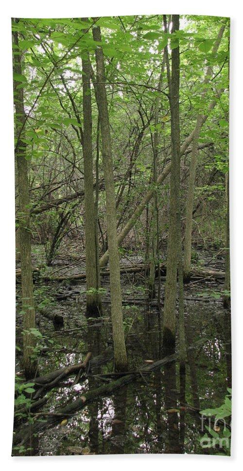 Carpenters Nature Preserve Hand Towel featuring the photograph Wetlands by Amanda Kessel