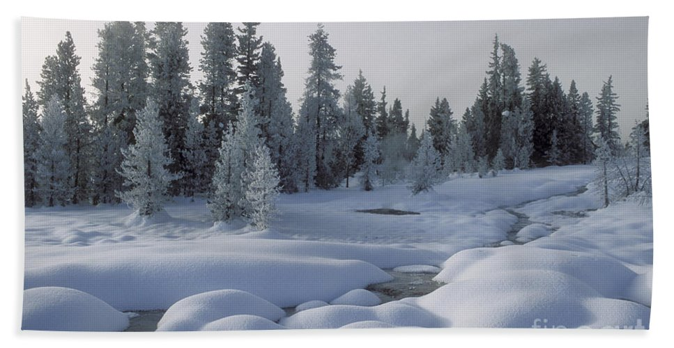 Yellowstone Hand Towel featuring the photograph West Thumb Snow Pillows by Sandra Bronstein