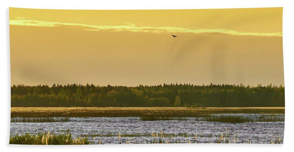 Isosuo Bath Sheet featuring the photograph Western Marsh Harrier At Puurijarvi by Jouko Lehto