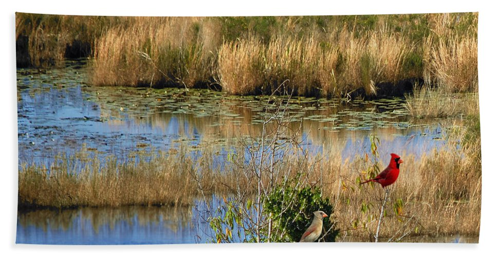 Wetlands Hand Towel featuring the photograph Wetlands by Adele Moscaritolo