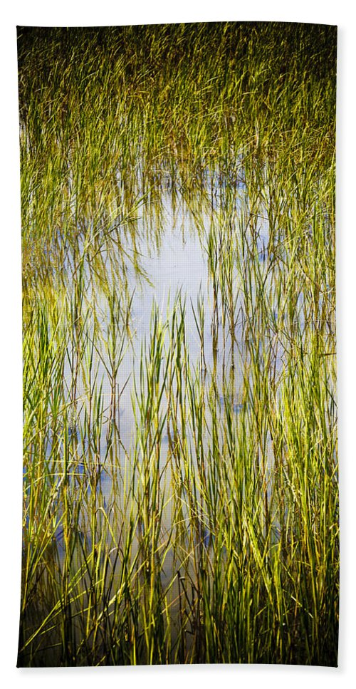 Wetlands Hand Towel featuring the photograph Wetlands by Marilyn Hunt