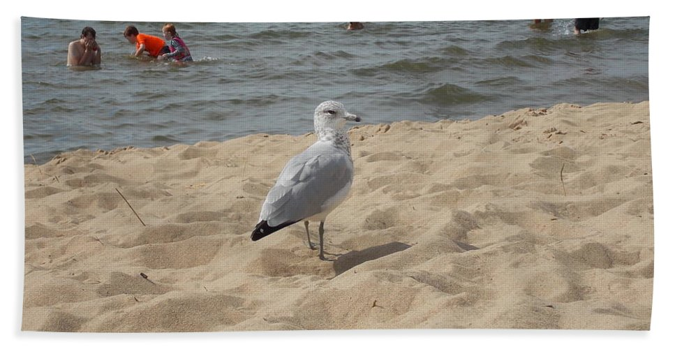 Seagull Hand Towel featuring the photograph What Are You Looking At? by Nina Kindred