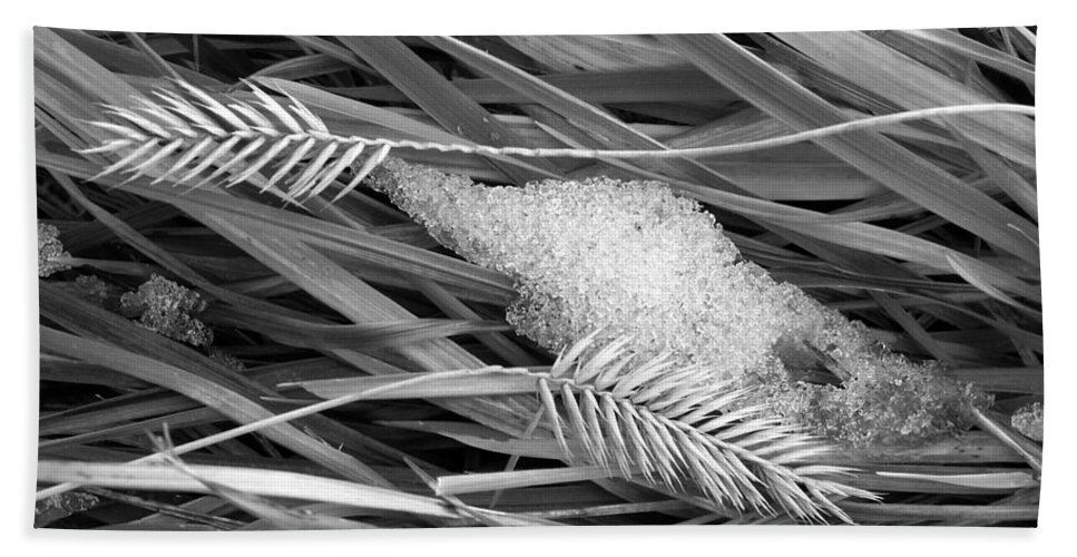 Wheat Bath Sheet featuring the photograph Wheat And Ice by Marilyn Hunt