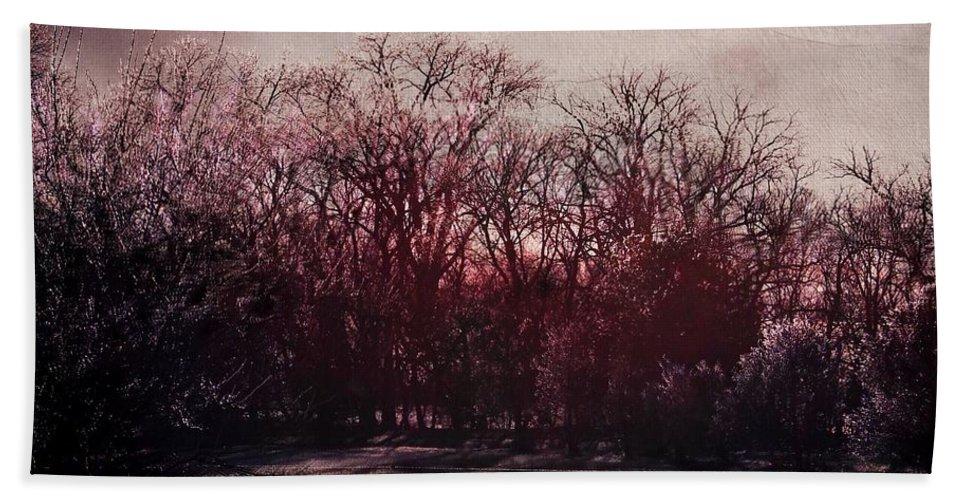 Landscape Bath Sheet featuring the digital art When Time Freezes by Reese Kiewel