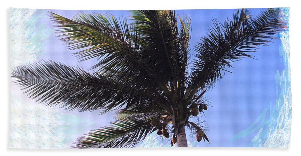Palm Hand Towel featuring the photograph Where Coconuts Come From by Ian MacDonald