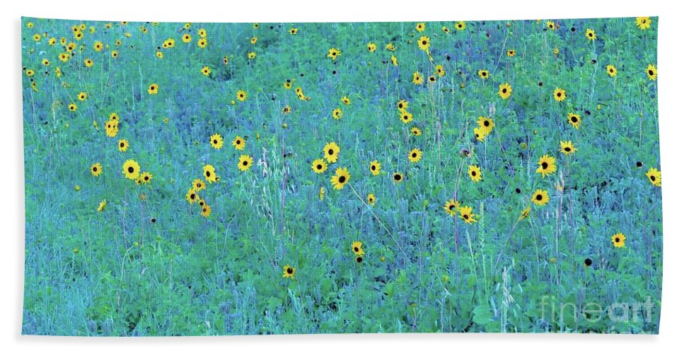 Where Hand Towel featuring the photograph Where The Flowers Bloom by Gary Richards