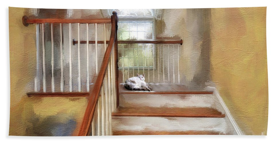 Step Hand Towel featuring the photograph Where's Kitty by Lois Bryan