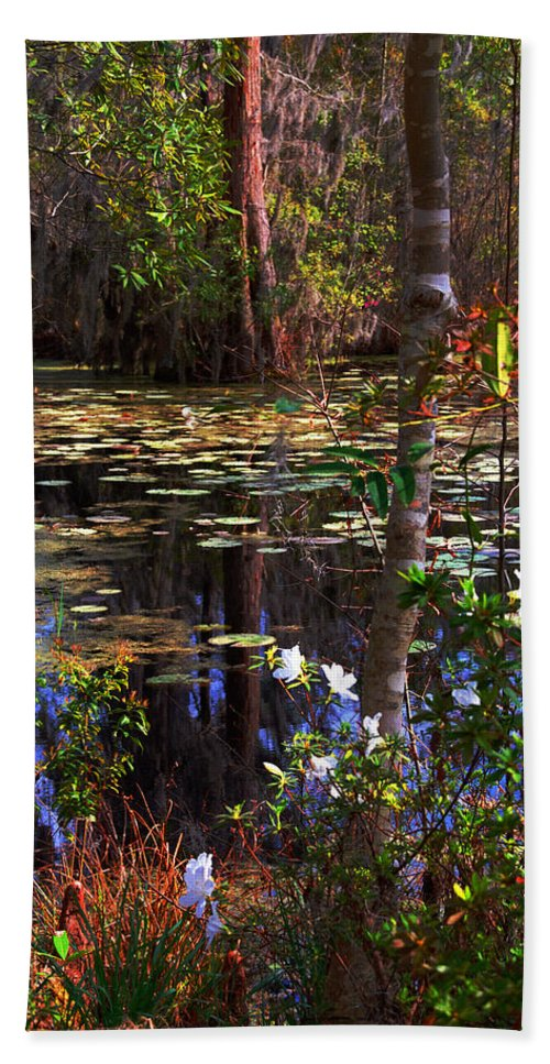 Swamp Hand Towel featuring the photograph White Azaleas In The Swamp by Susanne Van Hulst