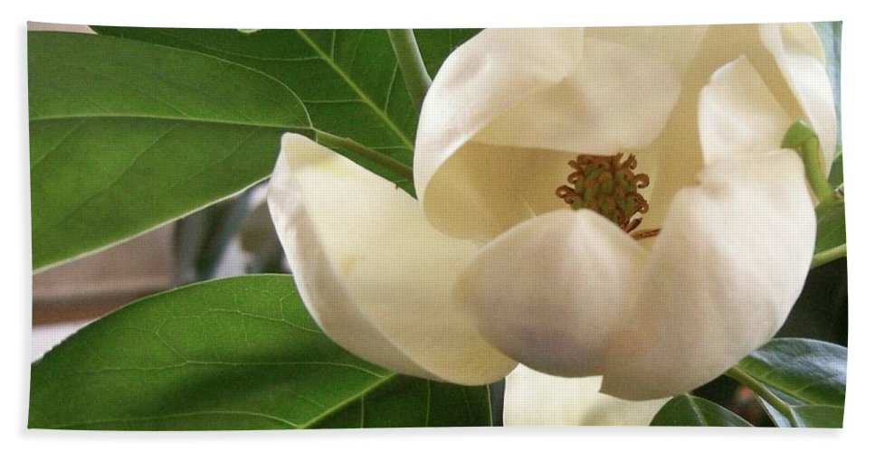White Bath Sheet featuring the photograph White Bouquet by Ze DaLuz