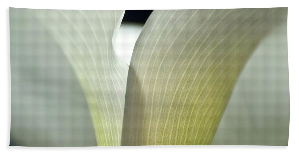 Calla Hand Towel featuring the photograph White Calla Lily by Heiko Koehrer-Wagner