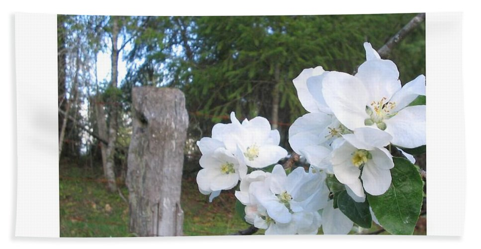 Flowers Bath Towel featuring the photograph White Flowers by Valerie Josi
