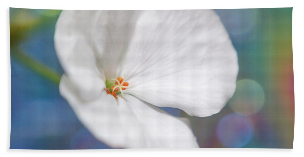 Flowers Bath Sheet featuring the photograph Winter White Geranium by Dorothy Lee