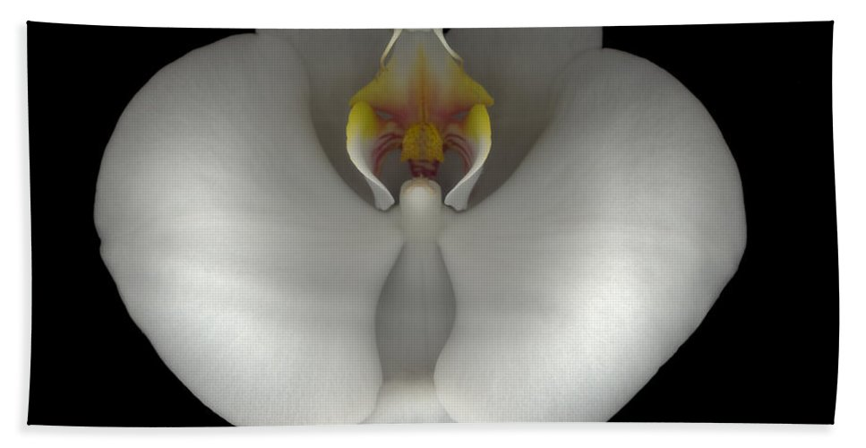 Hand Towel featuring the photograph White Orchid On Black by Heather Kirk