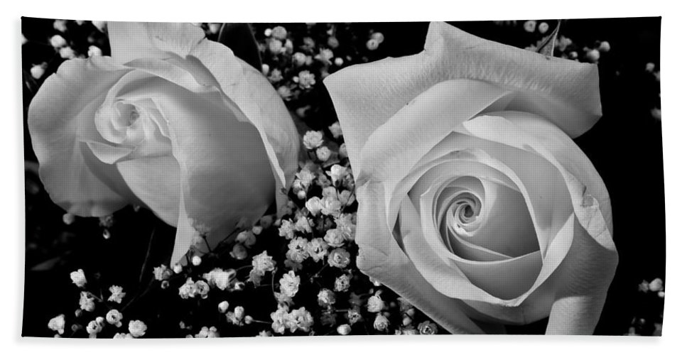 Flowers Hand Towel featuring the photograph White Roses Bw Fine Art Photography Print by James BO Insogna