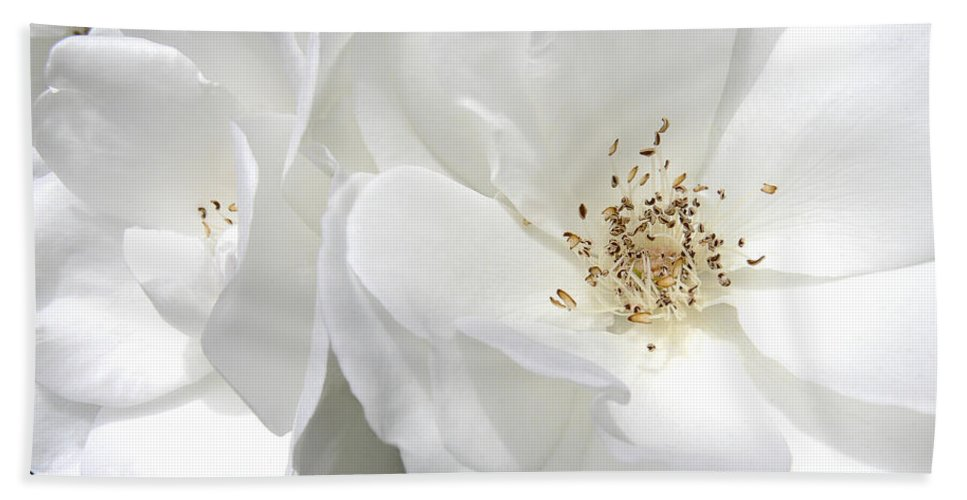 Rose Bath Sheet featuring the photograph White Roses Macro by Jennie Marie Schell