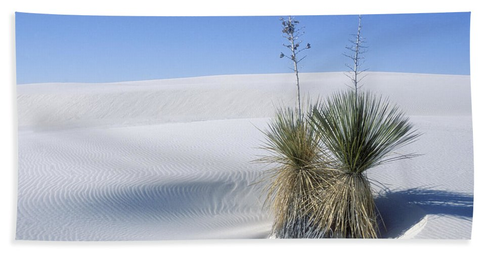 White Sands Hand Towel featuring the photograph White Sands Dune And Yuccas by Sandra Bronstein