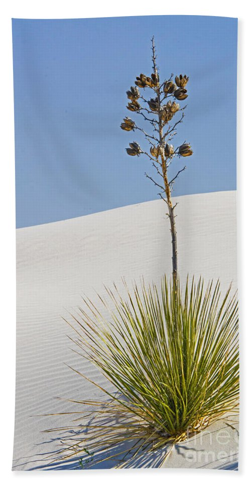 Nature Hand Towel featuring the photograph White Sands National Monument, Nm by Millard H. Sharp