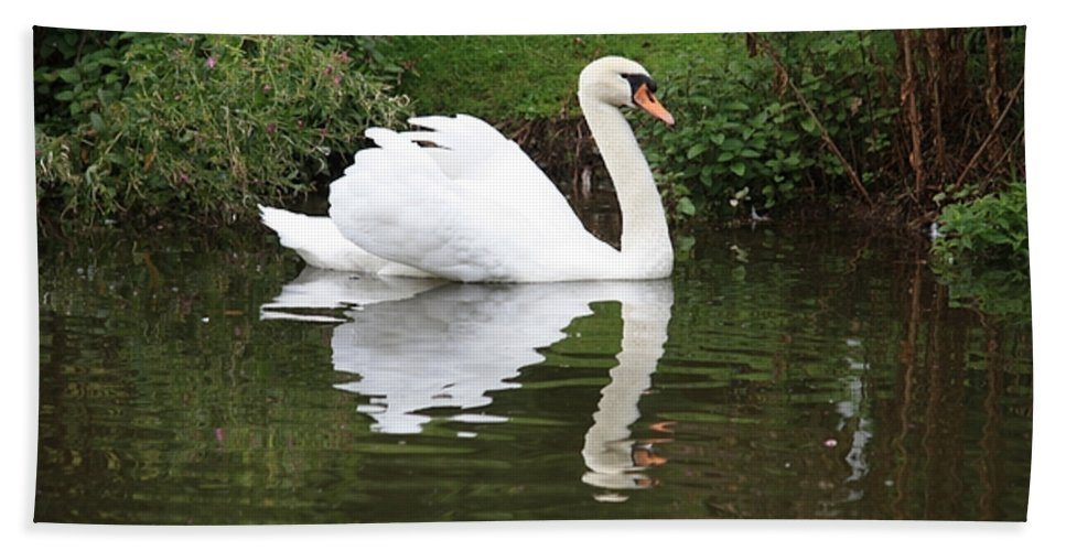 Swan Hand Towel featuring the photograph White Swan In Belgium Park by Carol Groenen