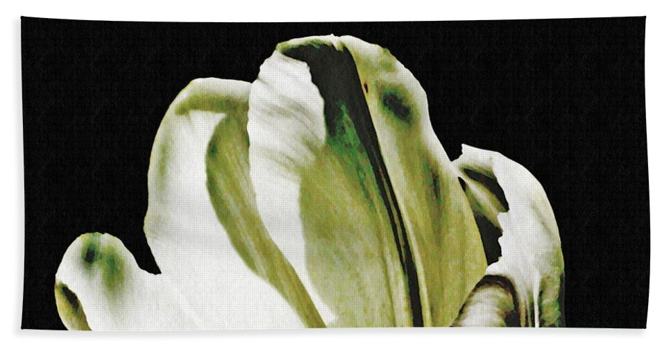 Tulip Bath Sheet featuring the photograph White Tulip by Sarah Loft