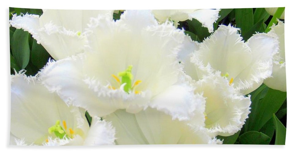 Tulips Hand Towel featuring the photograph White Tulips by Mary Deal