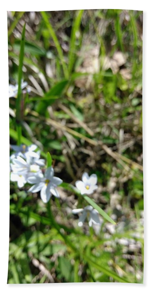 Flower Bath Sheet featuring the photograph White Wild Flower by Alisha Albin