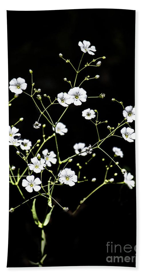 Wild Flowers Hand Towel featuring the digital art White Wild Flowers by Georgianne Giese