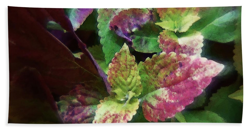 Coleus Bath Towel featuring the painting Who Needs Flowers by RC DeWinter
