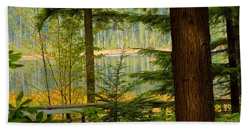 Whonnock Lake Bath Sheet featuring the photograph Whonnock Lake Through The Trees by Sharon Talson