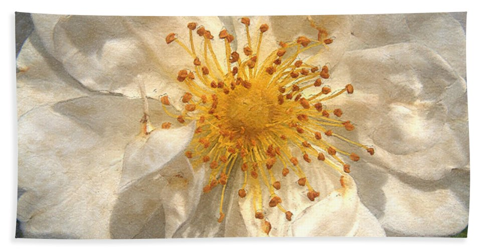 Rose Bath Sheet featuring the painting Wide Open by RC DeWinter