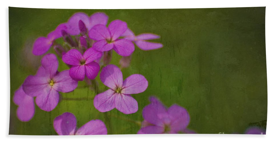 Flowers Bath Sheet featuring the photograph Wild And Wonderful by Tony Bazidlo