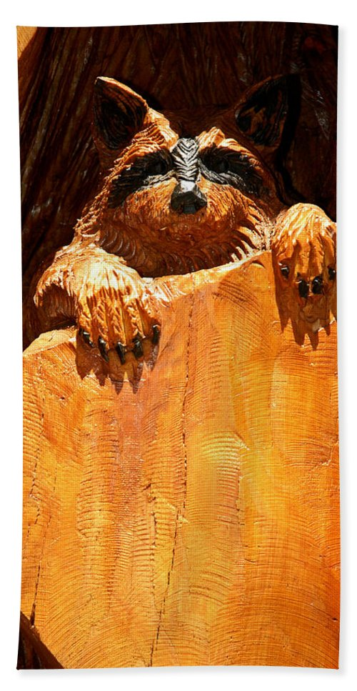 Usa Bath Sheet featuring the photograph Wild Bandit by LeeAnn McLaneGoetz McLaneGoetzStudioLLCcom