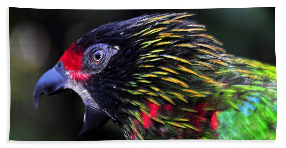 Bird Hand Towel featuring the photograph Wild Bird by David Lee Thompson
