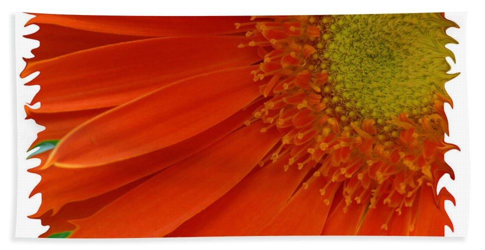 Gerber Daisy Orange Yellow Digital Art Photograph Photography Photographer Flower Plant Nature Bath Towel featuring the photograph Wild Daisy by Shari Jardina