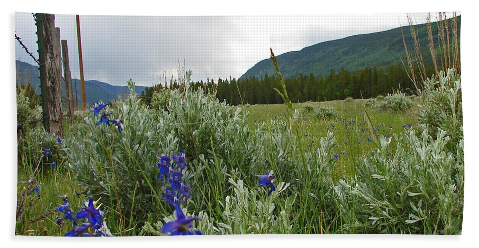 Wild Flowers Hand Towel featuring the photograph Wild Delphinium by Heather Coen