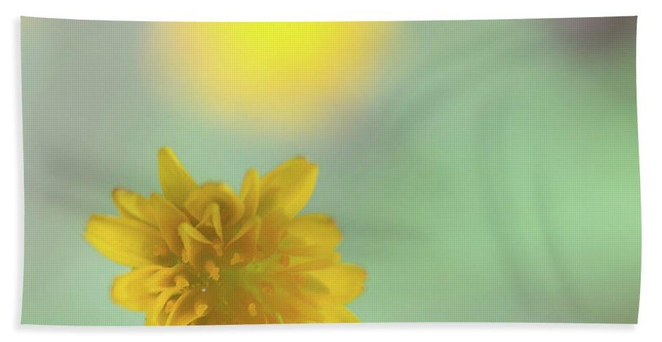 Flower Bath Sheet featuring the photograph Wild Flower by Henri Irizarri